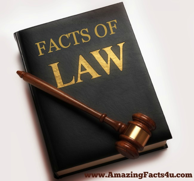 Law Amazing Facts 4u