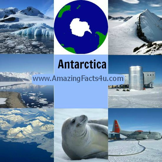 Antarctica Amazing Facts