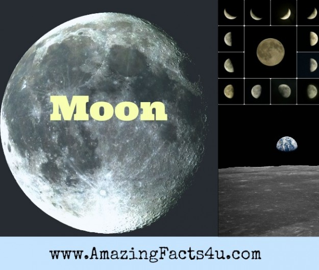 Moon Amazing Facts 4u