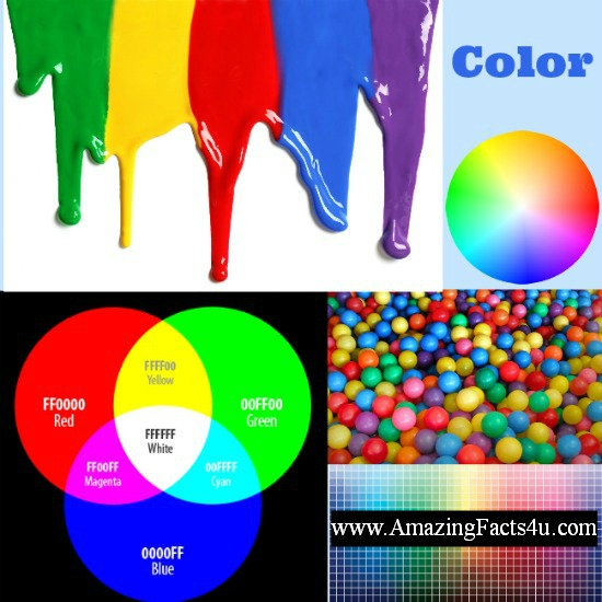 Color Amazing Facts 4u