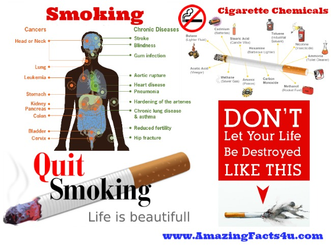 Smoking Amazing Facts