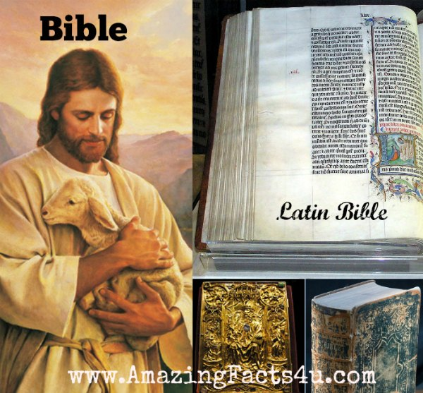 Bible Amazing Facts 4u