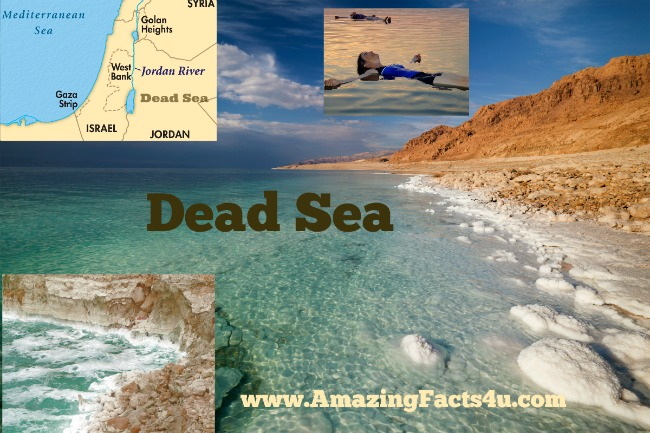 Dead Sea Amazing Facts