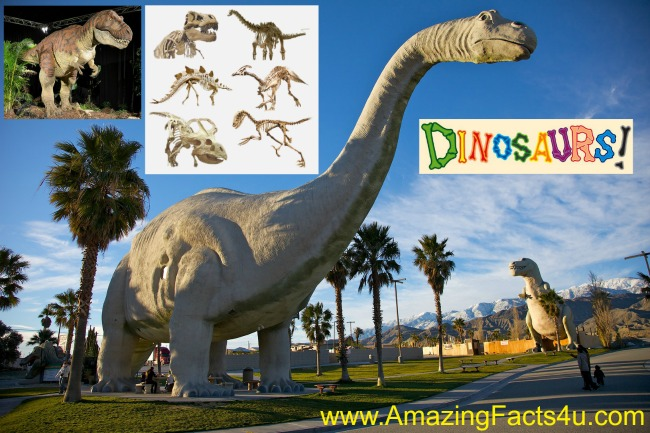 1 5 Interesting Facts About Dinosaurs