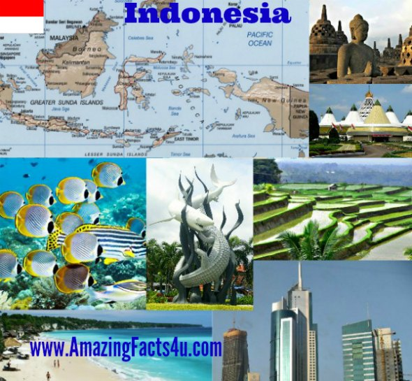 Indonesia Amazing facts