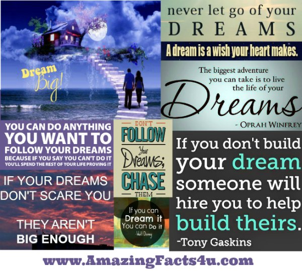 Dream Amazing Facts 4u