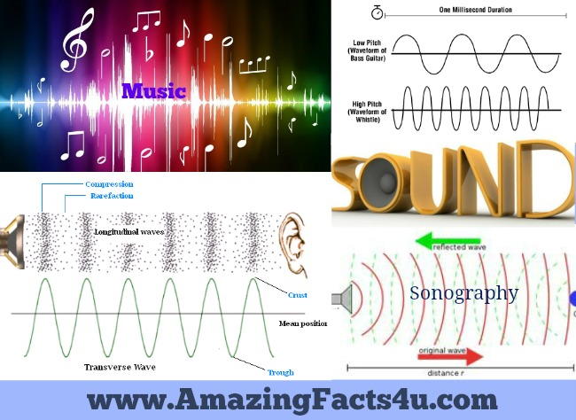 Sound Amazing Facts 4u