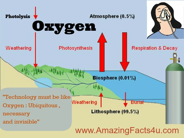 Oxygen Amazing Facts