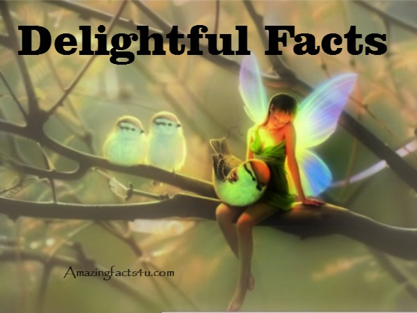 Delightful Facts