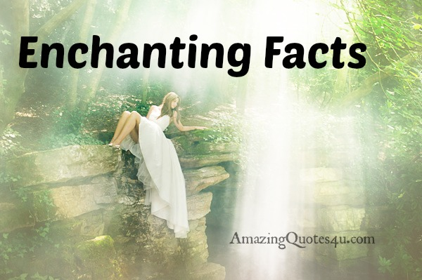 Enchanting Facts