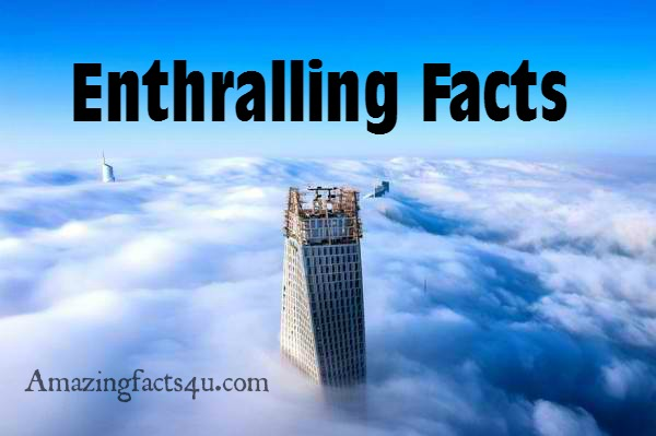Enthralling Facts