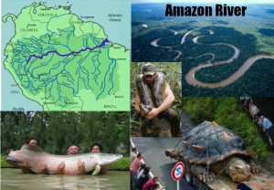 Amazon River Amazing Facts