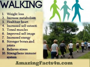 Walking amazing facts