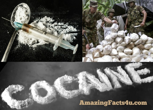 Cocaine Amazing facts