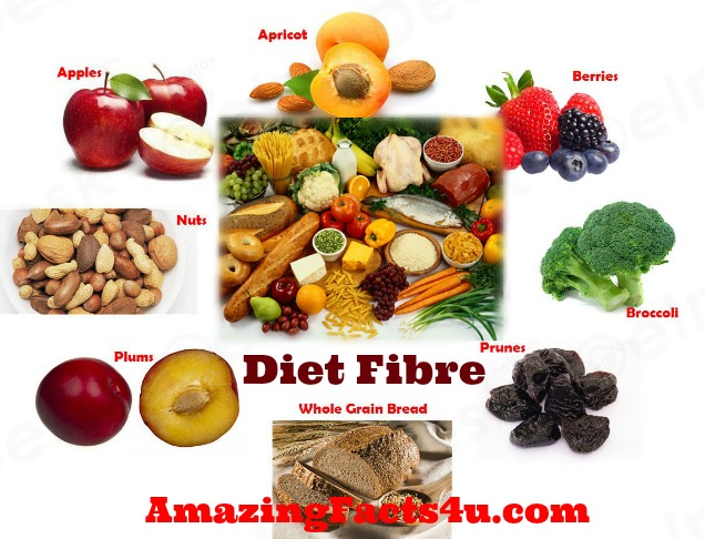 Diet Fibre Amazing facts