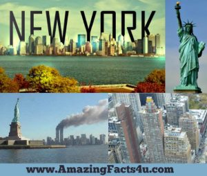 NewYork Amazing facts