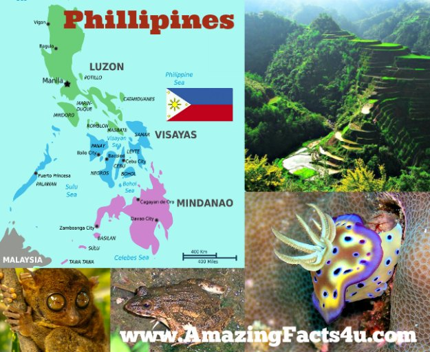 Phillipines Amazing Facts