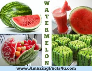 amazing-facts-watermelon