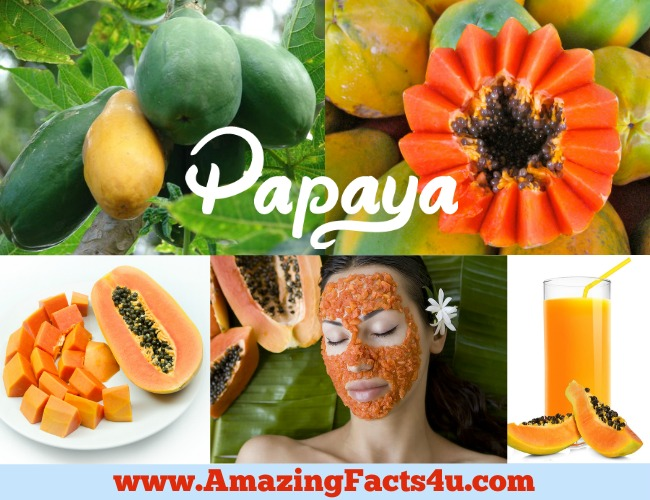 Amazing Facts Papaya